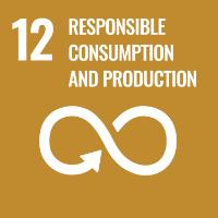 SDG12 Logo