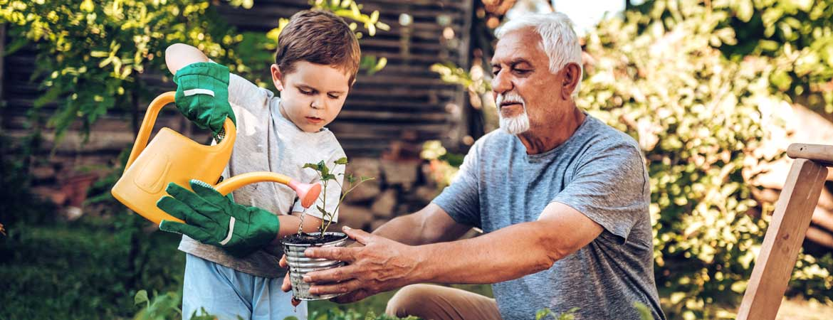 boy watering plants with grandfather